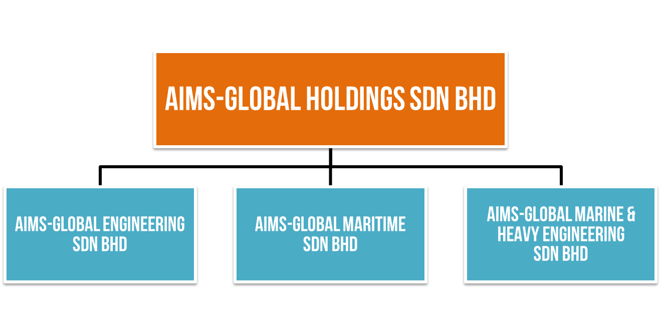 aims-global-holding-organization-structure2